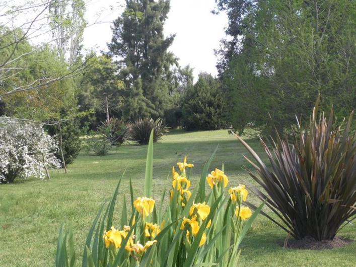 Estudio parques paisajismo en canning tel fono y m s info for Empresas de paisajismo