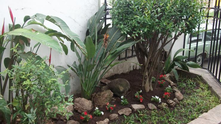Dise o de espacios verdes jardines y mas en paran for Jardines verdes