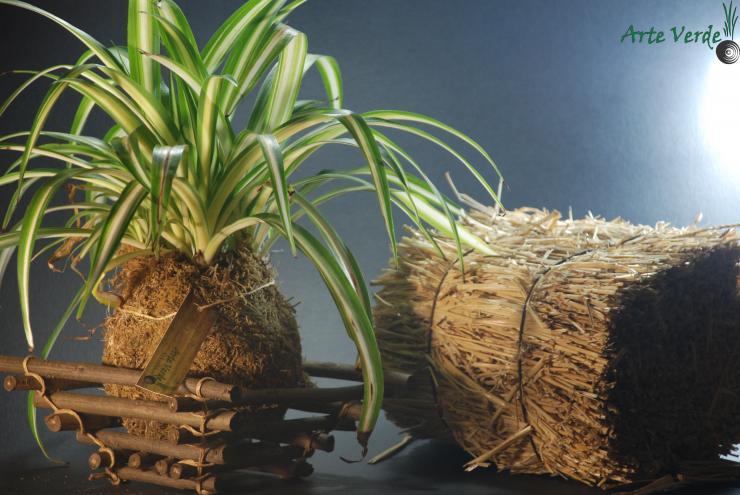El arte del kokedama jardineria guia de jardineria auto - Guia de jardineria ...