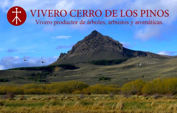 Vivero cerro de los pinos en san mart n de los andes for Viveros en neuquen
